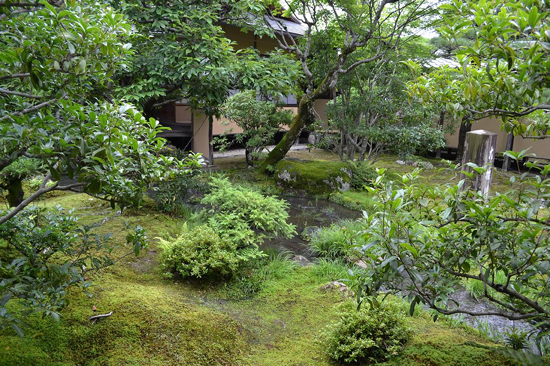 pflanzen japanischer garten japanischer garten pflanzen kunstrasen garten japanischer garten. Black Bedroom Furniture Sets. Home Design Ideas